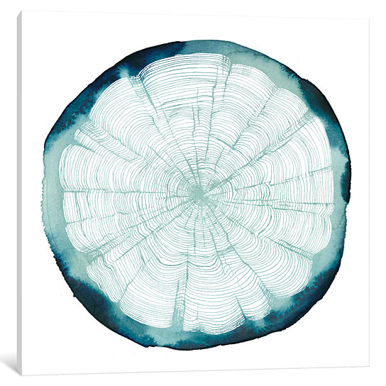 Tree Ring Overlay Canvas