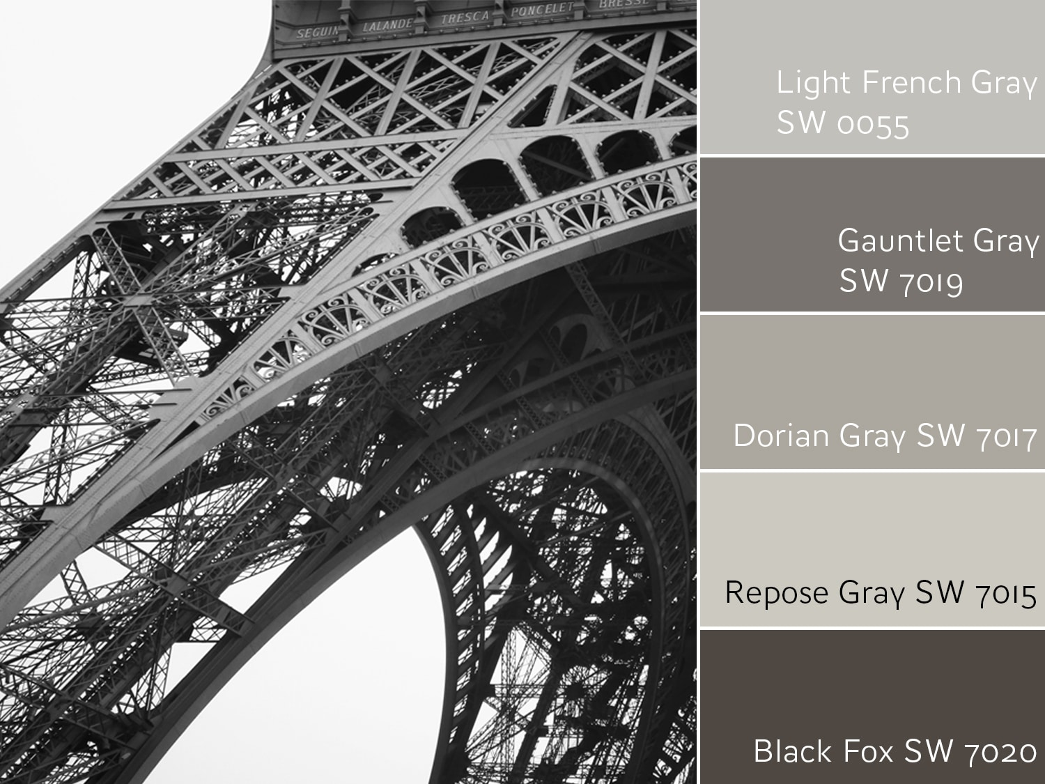 Light French Gray SW 0055 Monochromatic Color Scheme