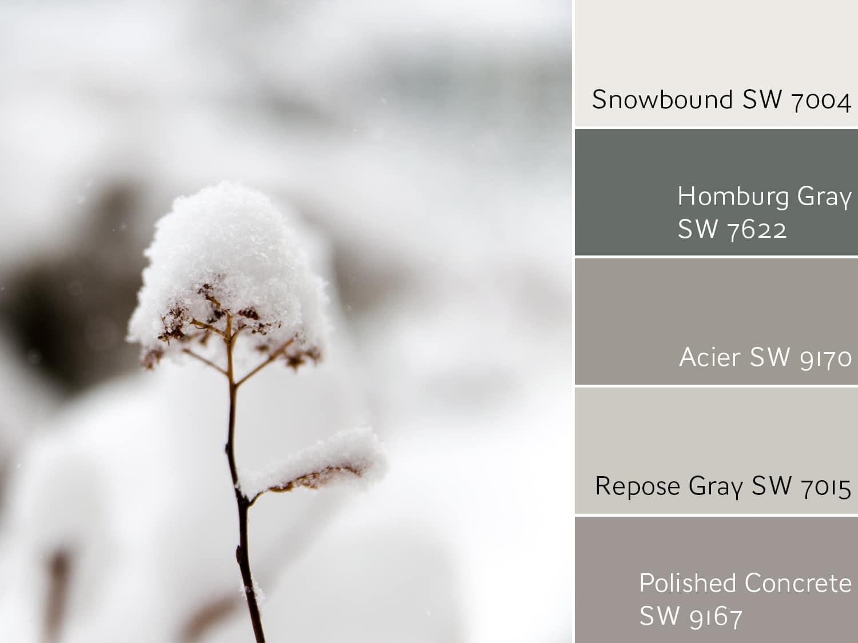 Snowbound SW 7004