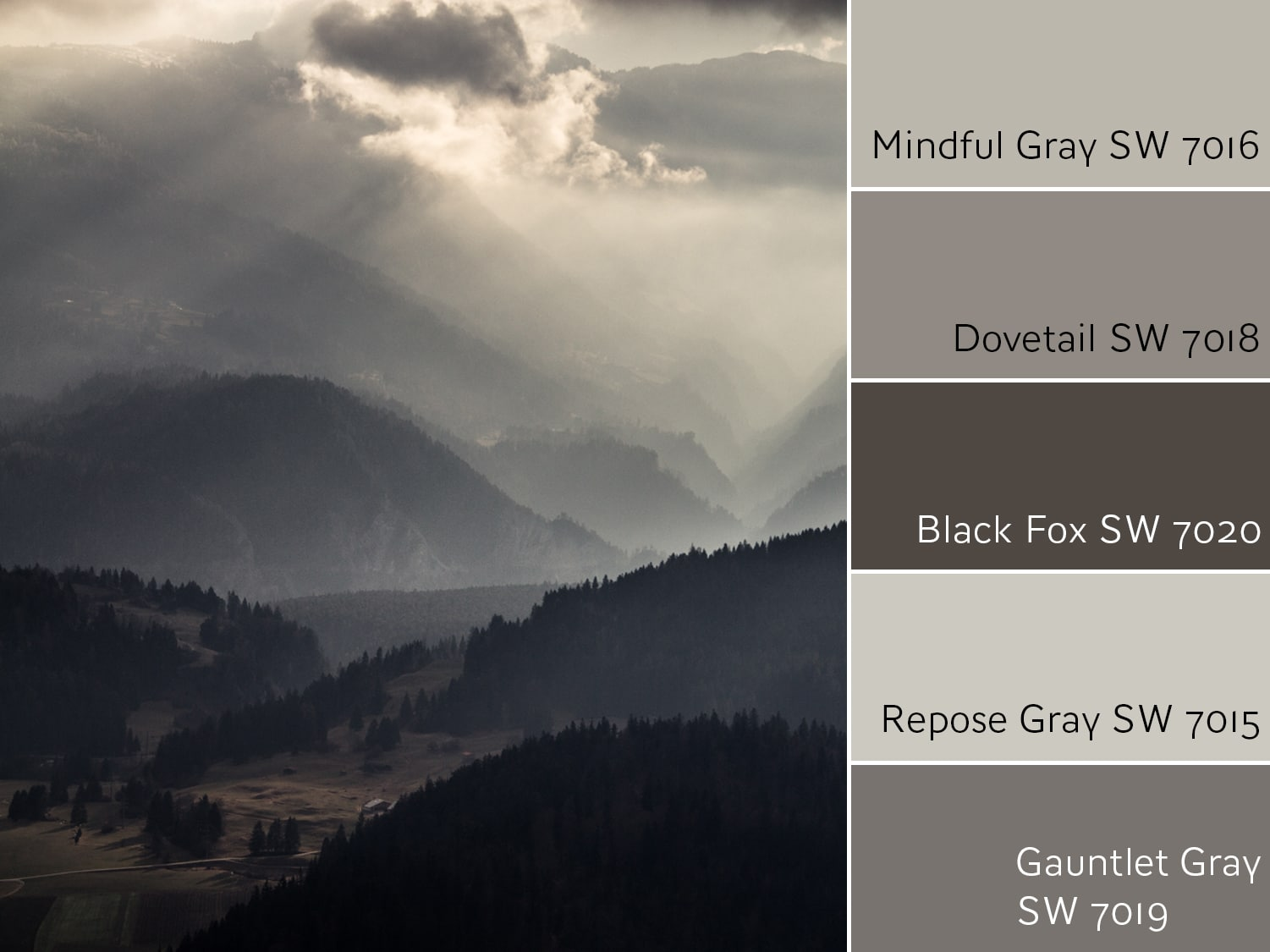 mgfeature - Color Wheel Update: Mindful Gray