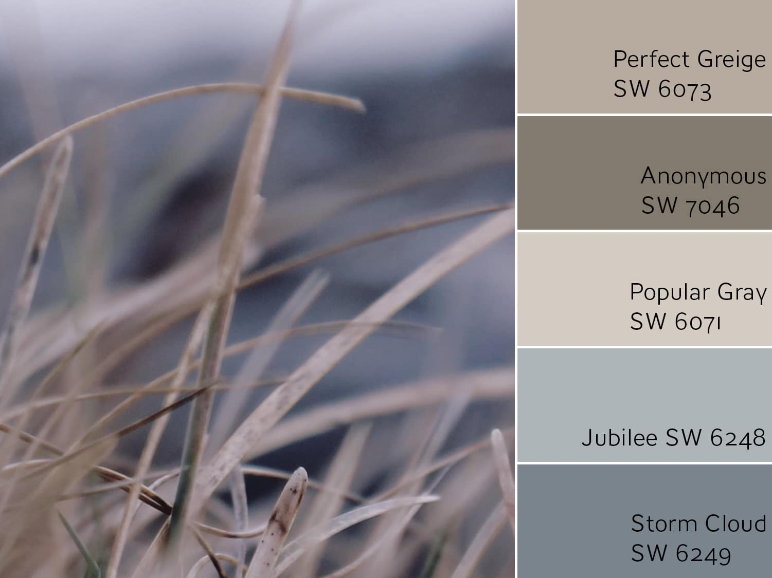 Perfect Greige SW 6073 complimentary scheme.