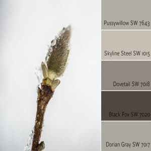 Pussywillow SW 7643 Monochromatic color scheme