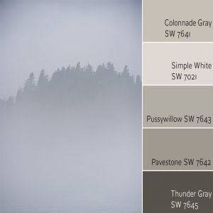 Colonnade Gray SW 7641 Monochromatic Color Scheme