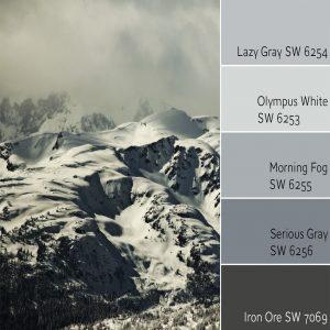 Lazy Gray Monochromatic Color Scheme