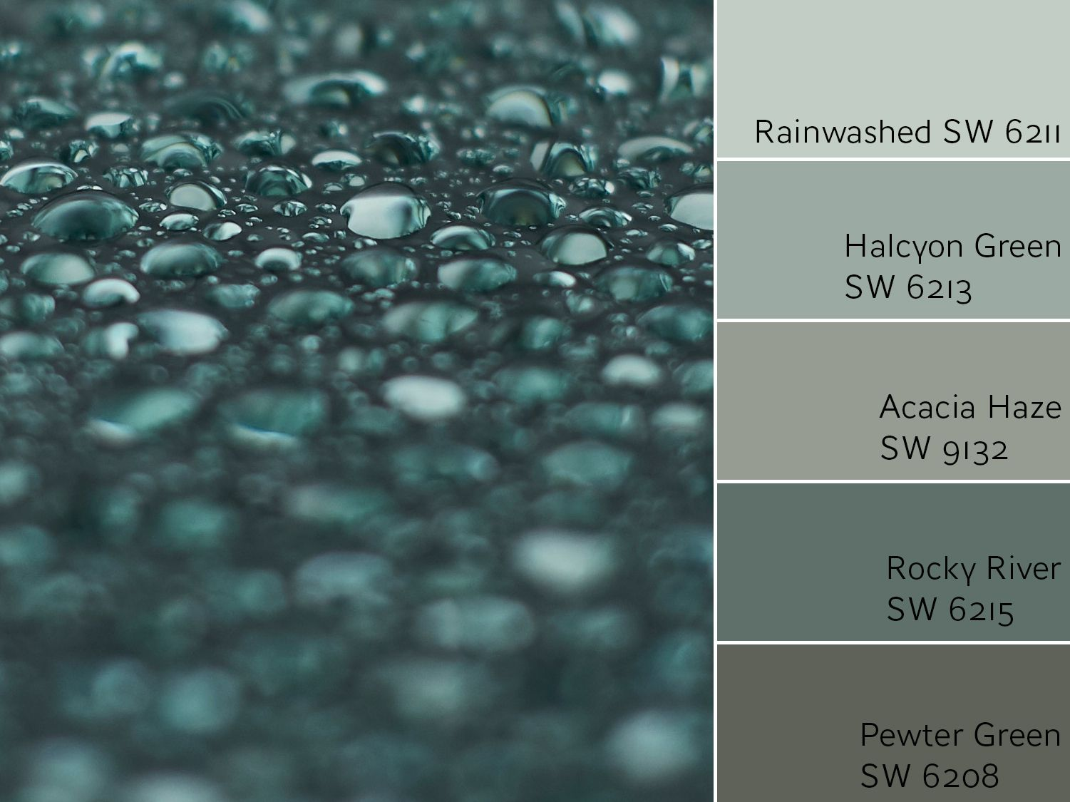 Rainwashed Sw 6211 Review By Laura Rugh Rugh Design,Best Artificial Christmas Trees
