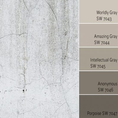 Worldly Gray Monochromatic Color Scheme