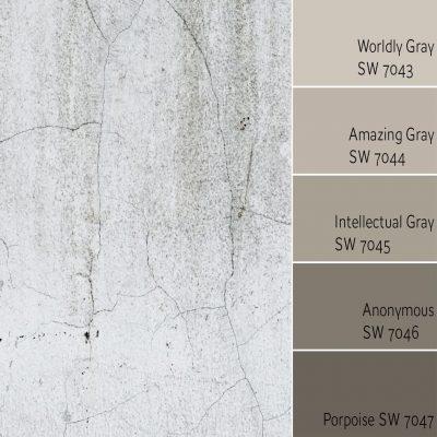 Worldly Gray Monochromatic Color Scheme