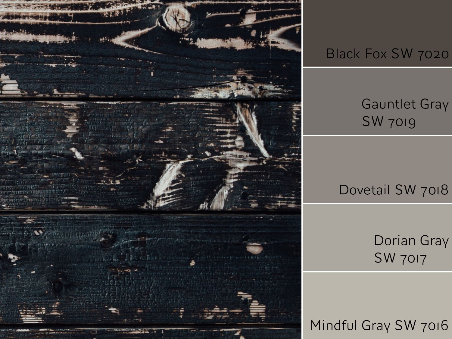 Black fox sw 7020 review by laura rugh rugh design - Sherwin williams black fox exterior ...
