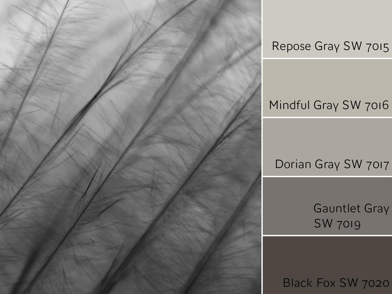 Repose Gray Monochromatic Color Scheme