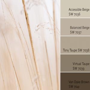 Accessible Beige Monochromatic Color Scheme