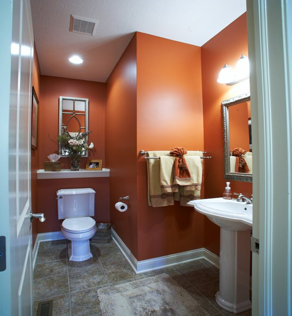 Bathroom painted Cavern Clay by Fine Design & Interiors