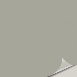 Rare Gray SW 6199