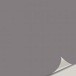Sensuous Gray SW 7081
