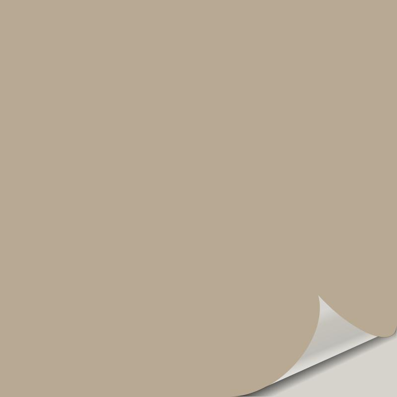 Universal Khaki SW 6150 Peel and Stick Paint Samples - Universal Khaki