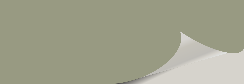 Green Onyx SW 9128 Color Block - Green Onyx