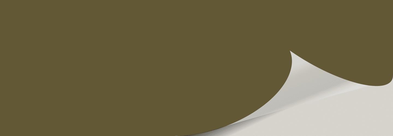 Palm Leaf SW 7735 Color Block - Palm Leaf
