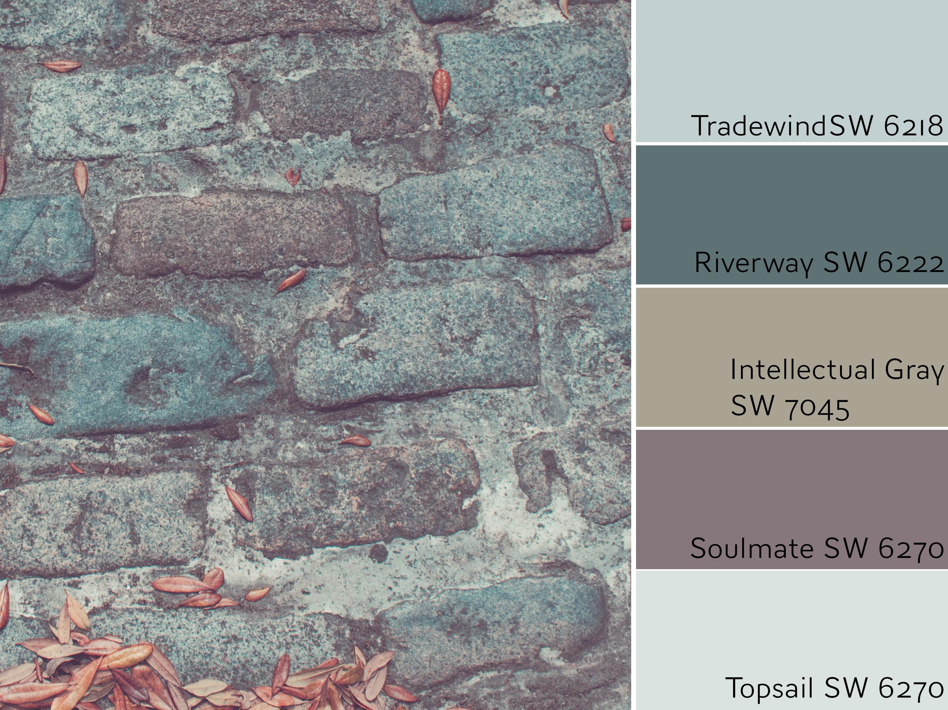 Tradewind Color Review
