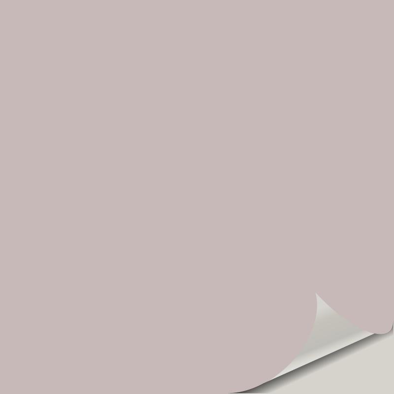 Studio Mauve SW 0062 Peel and Stick Paint Sample