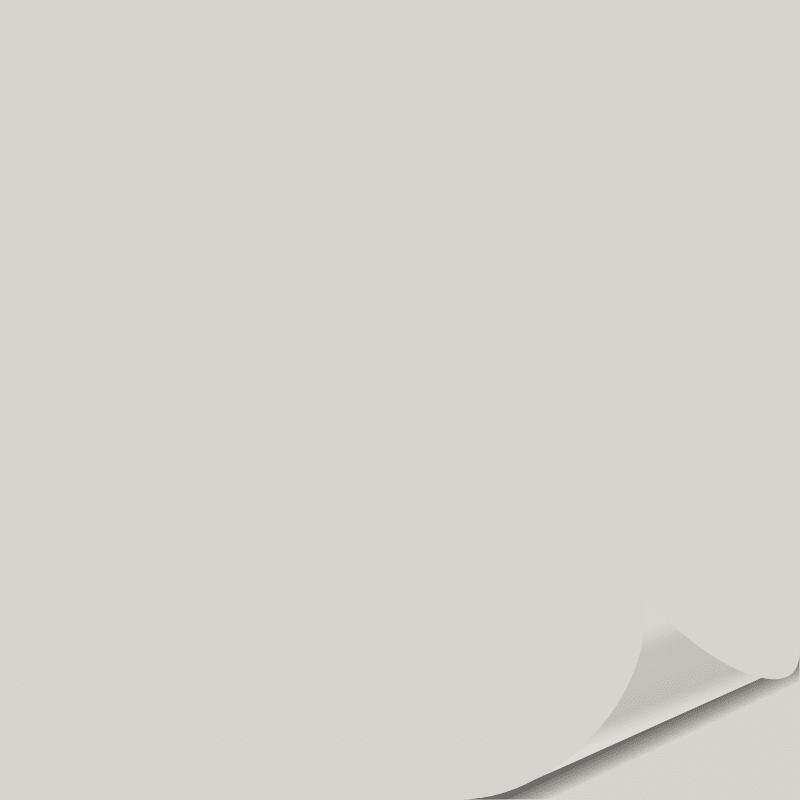 Gray Owl OC 52 Peel and Stick Paint Sample