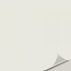 Sebring White OC 137 Peel and Stick Paint Sample