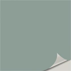 Jasper Stone SW 9133 Peel and Stick Paint Sample