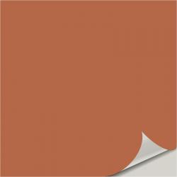 Reynard SW 6348 Peel and Stick Paint Sample