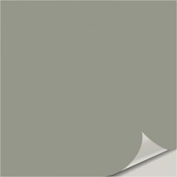 Evergreen Fog SW 9130 Peel and Stick Paint Sample