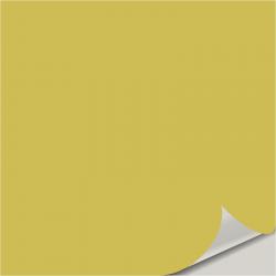 Limon Fresco SW 9030 Peel and Stick Paint Sample